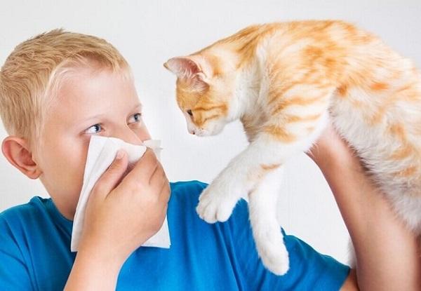 allergia-u-rebenka5